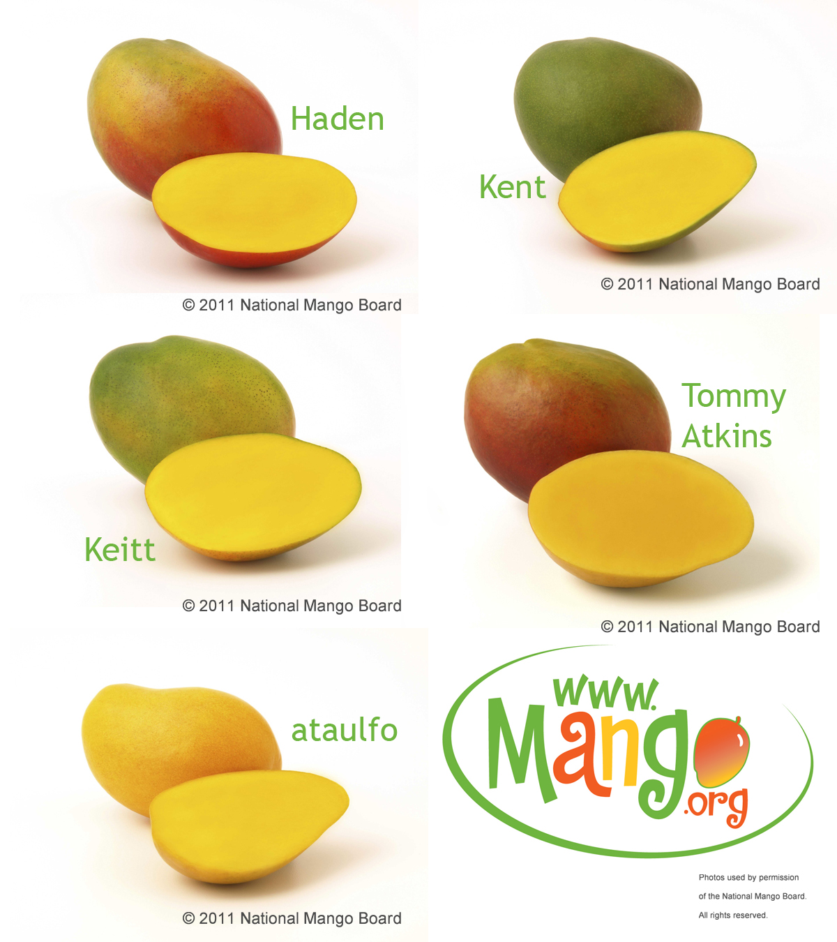 Mango Varieties Mangolicious Pat Eby; A Food Writer Skinnies Up How To Eat  A Mango